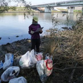ゴミは集計しながら回収する。