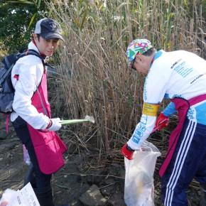 ゴミが多いので、ゴミを拾う人とゴミ袋を持つ人に分担しないと作業が進みません。